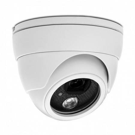 IP-камера купольная AVTECH AVN320 (2.8)
